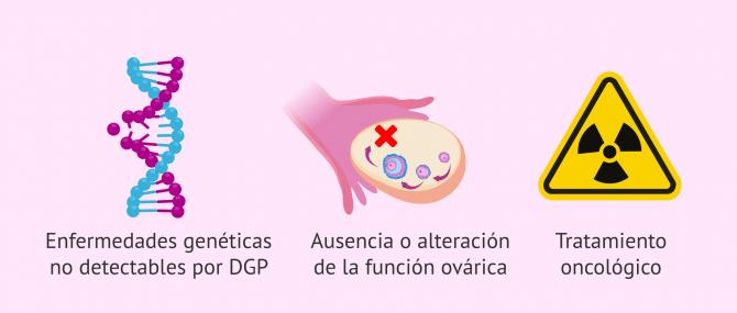 Imagen: Casos indicados para la donación de óvulos