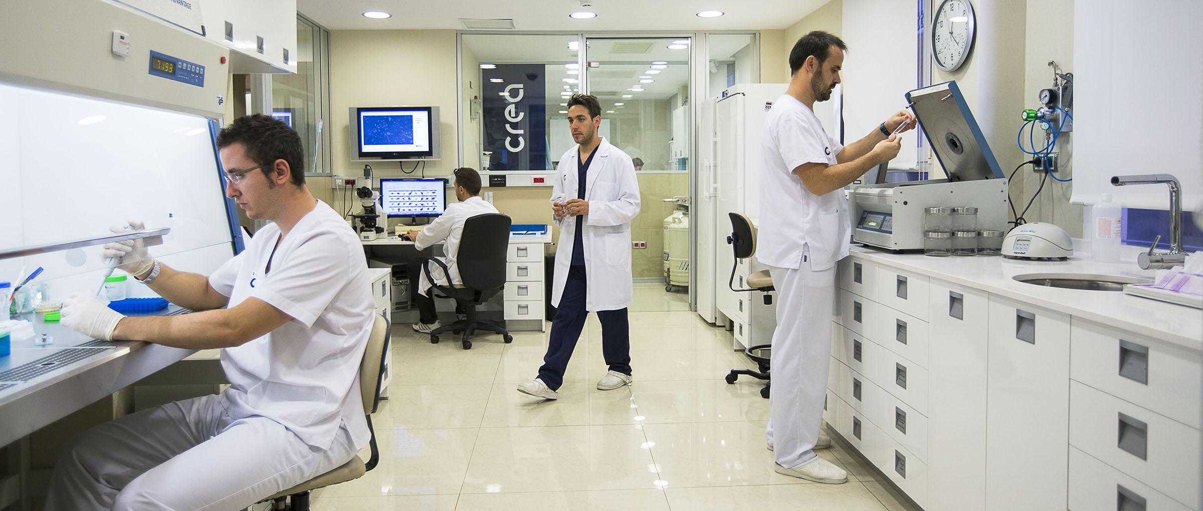 Embriología clínica Crea
