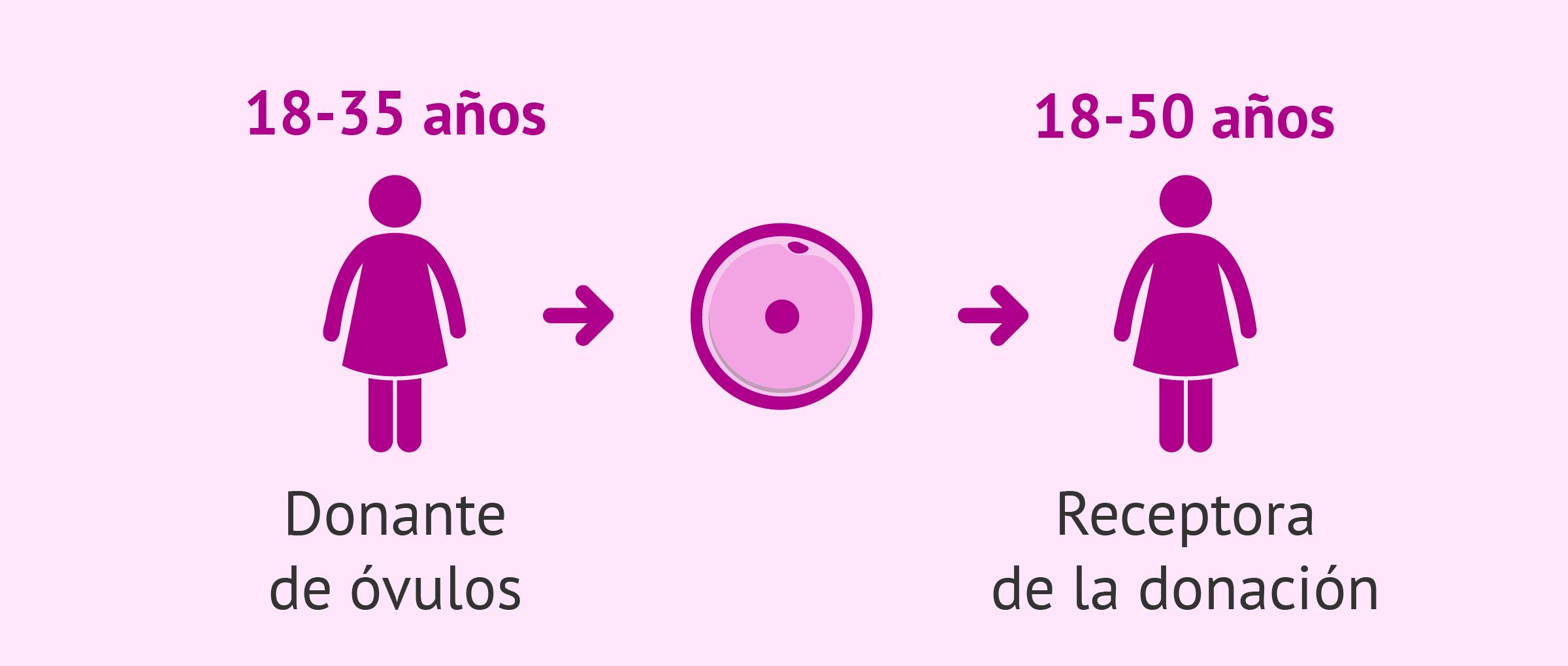 Edad de las donantes de óvulos y de las receptoras de ovodonación