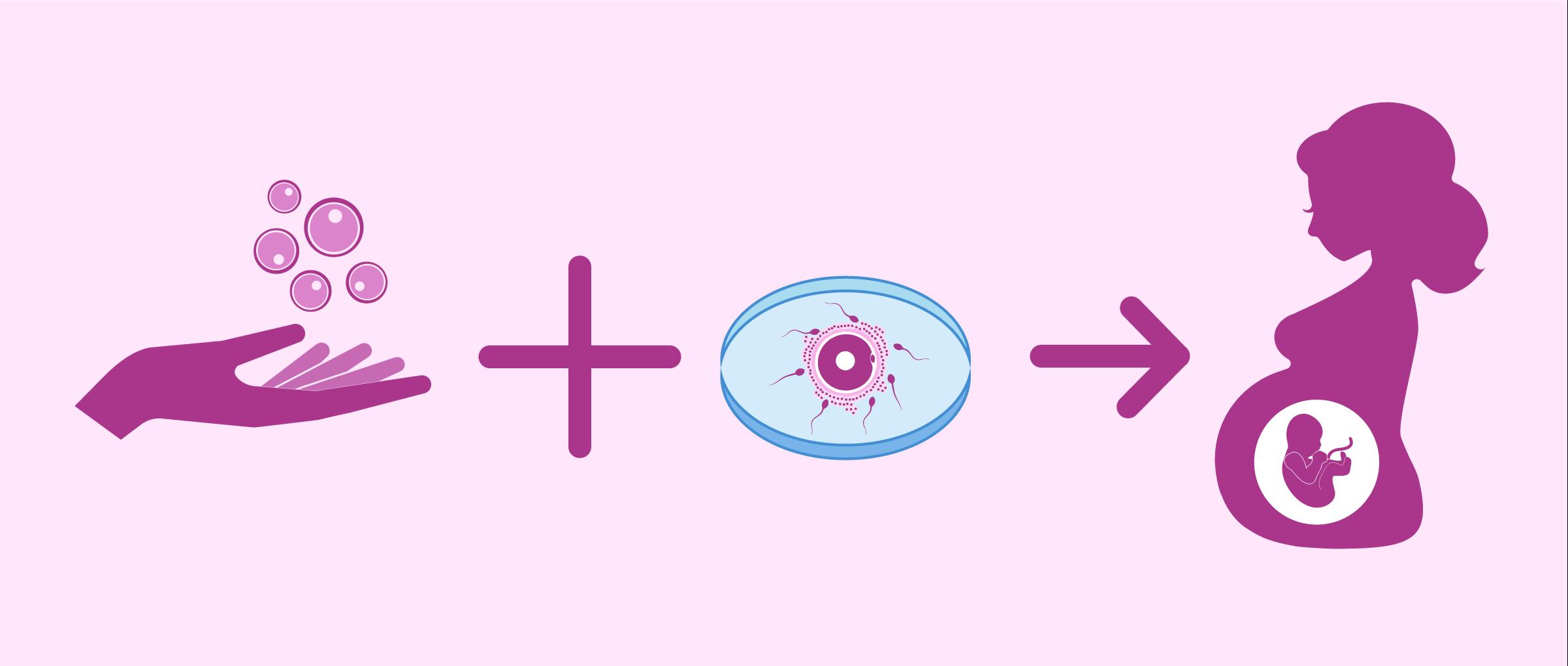 Embarazo con óvulos donados