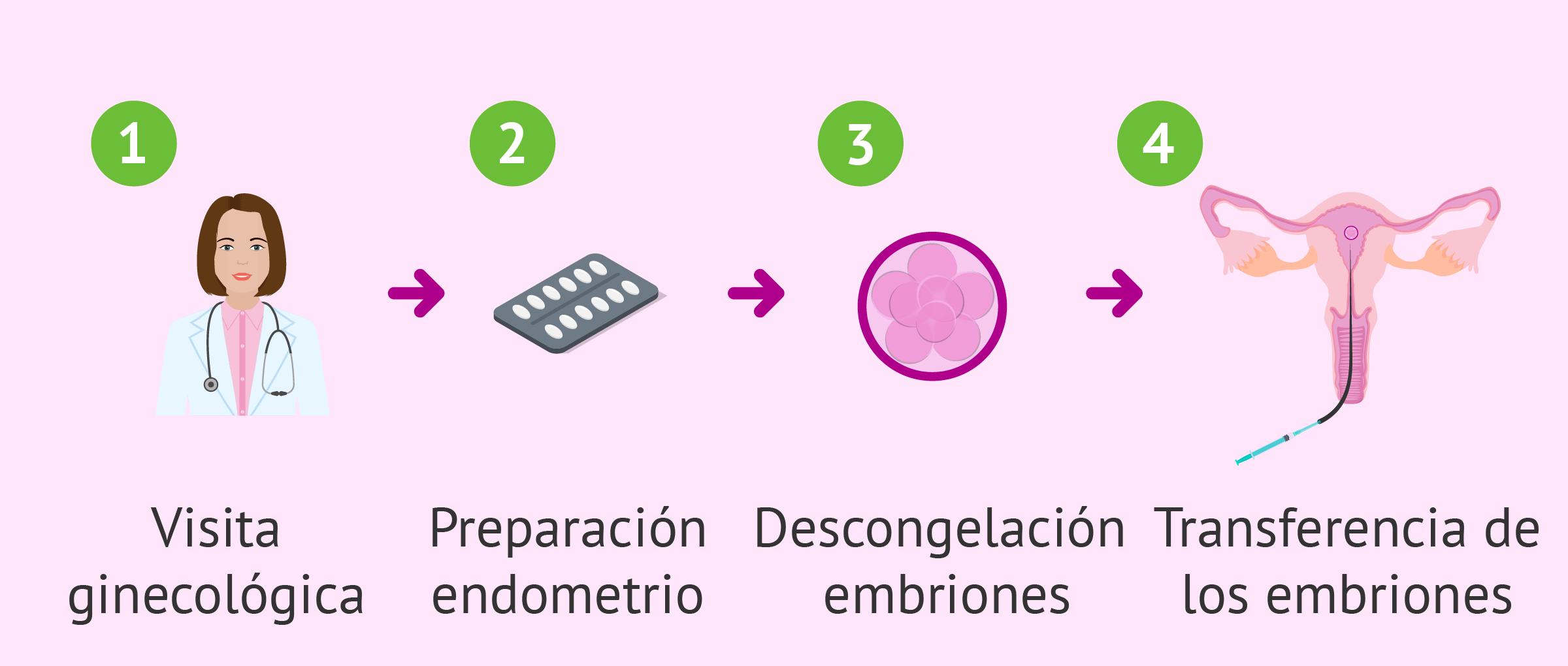Pasos de la embrioadopción