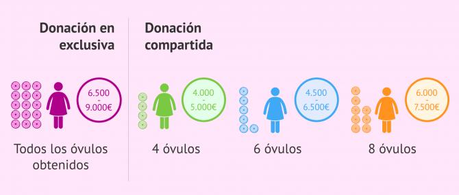 Imagen: Comparación del precio en ovodonación exclusiva y compartida