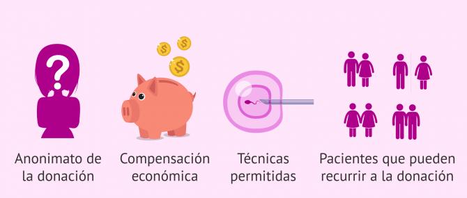 Imagen: Donación de gametos en los distintos países