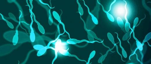 Precio de la inseminación artificial con donación de semen en Chipre