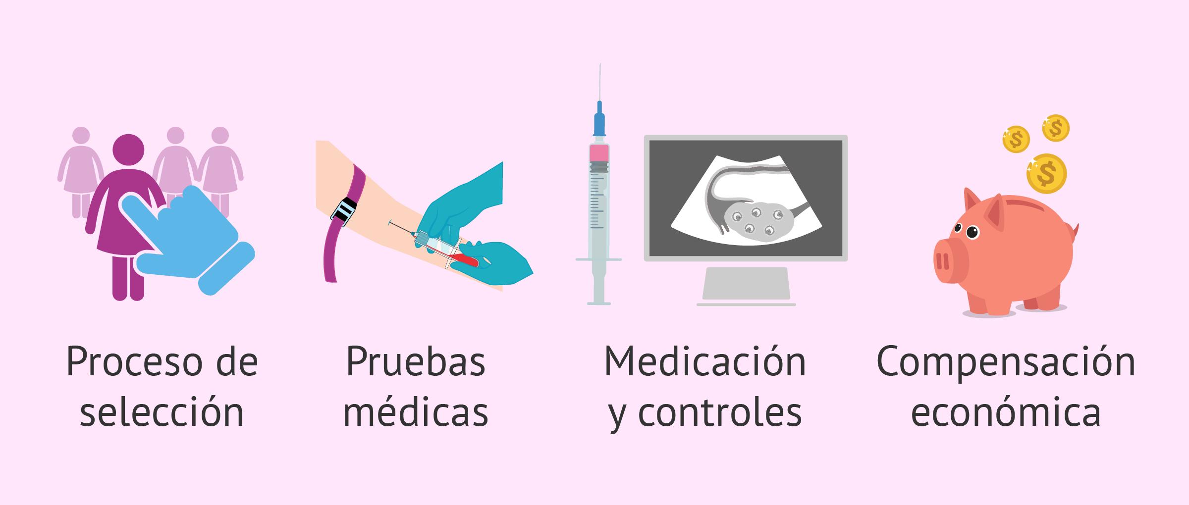 Factores que influyen en el precio de los tratamientos de ovodonación