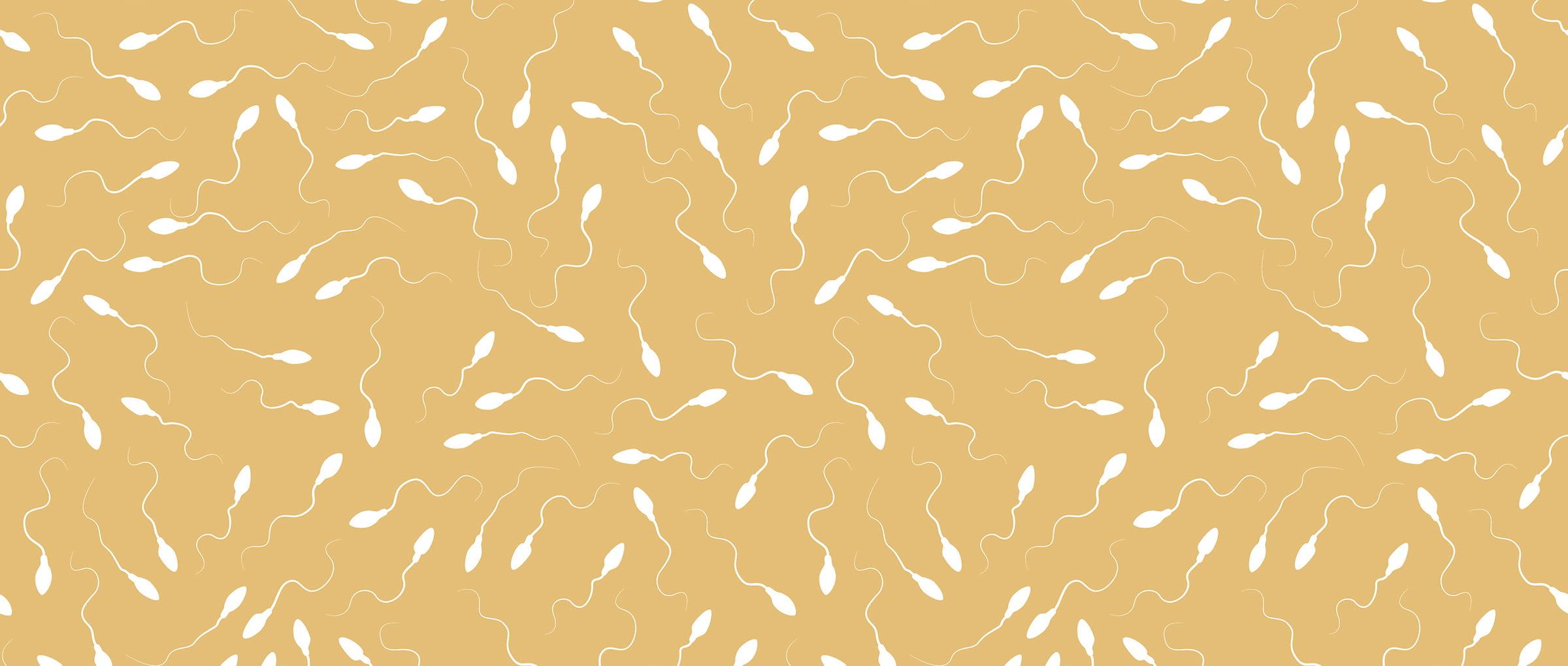 Calidad del semen