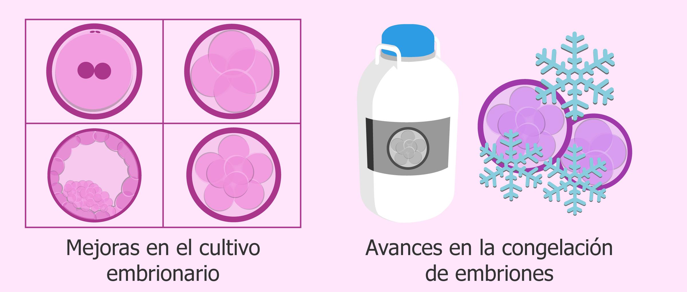 Avances en las técnicas de reproducción asistida