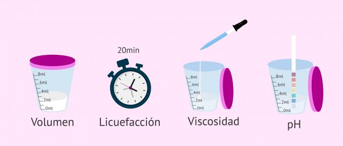 Imagen: Análisis macroscópico del semen